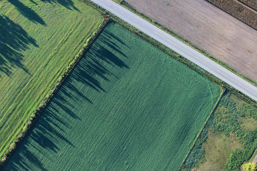 a green field ripe for real estate development